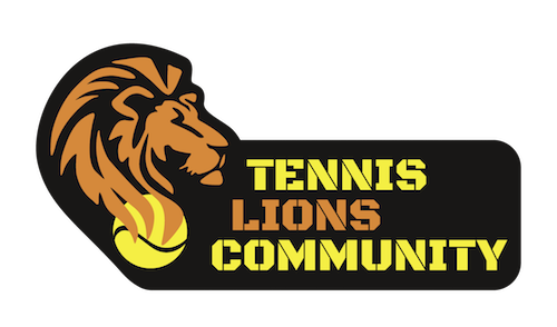 http://www.lions-community.at